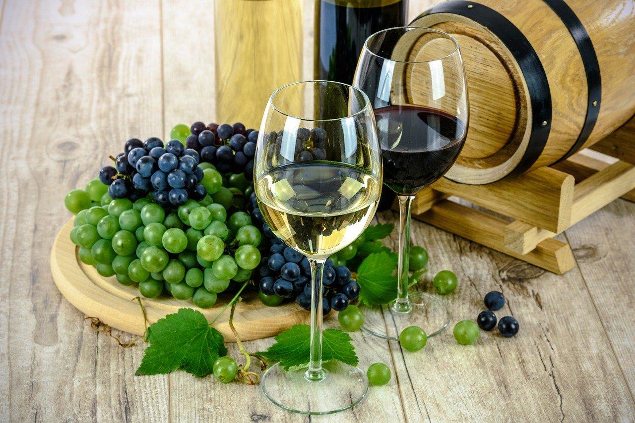 Targi Wino